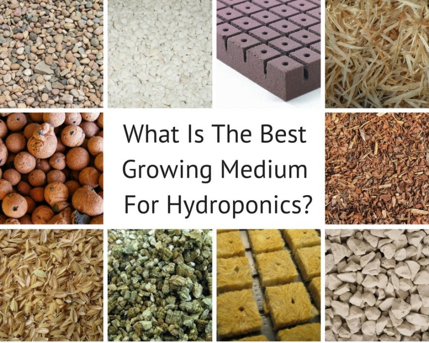 What is the best growing medium for hydroponics?