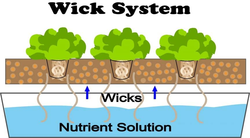 What Is Wick System Hydroponics? - Smart Garden Guide