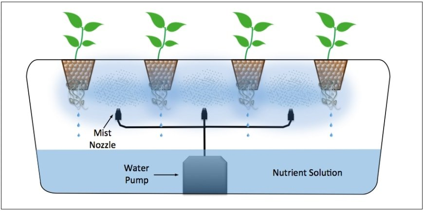What Are The Types Of Hydroponics Systems Smart Garden Guide