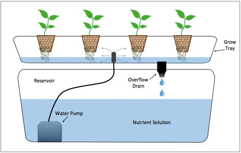 Ebb and flow flood and drain hydroponics system