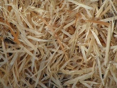 pine shavings for hydroponics