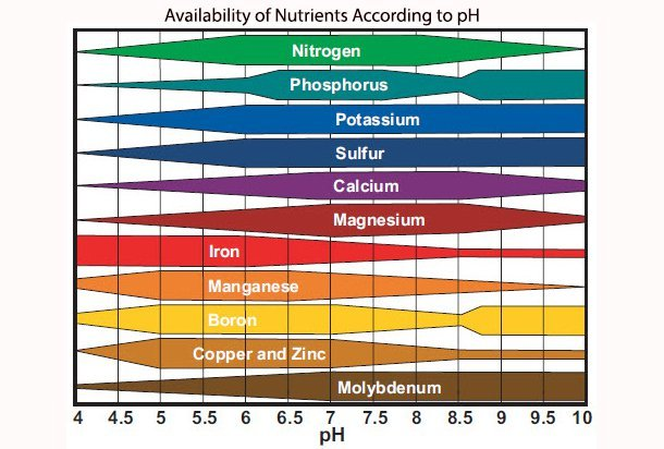 plant nutrient ph availability chart