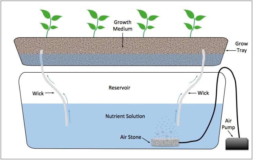wick system hydroponics system