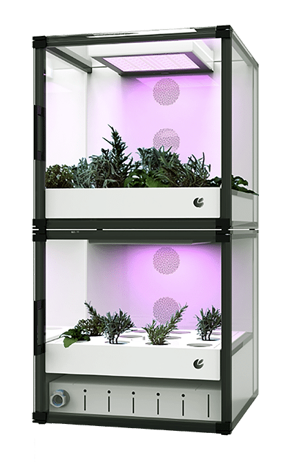 citycrop automated indoor farm