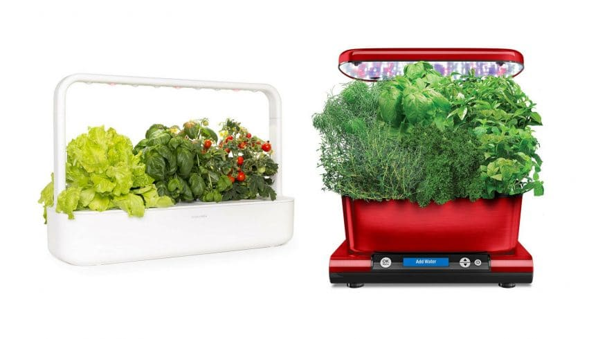 click and grow vs aerogarden smart garden