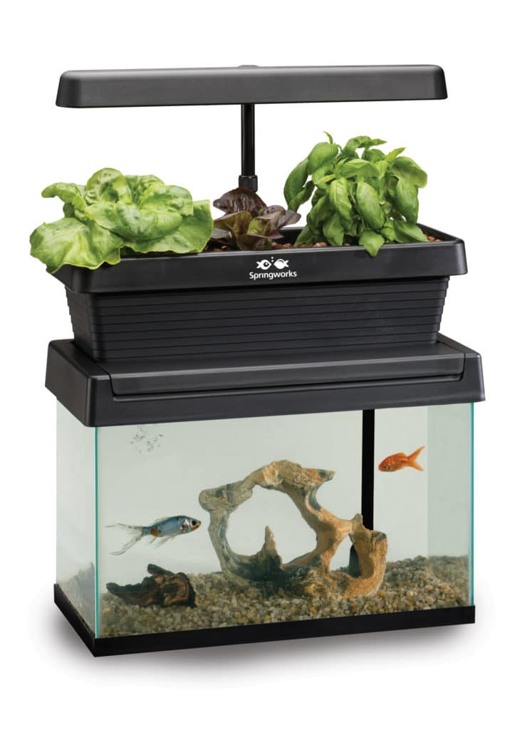 Springworks microfarm aquarium topper aquaponics system