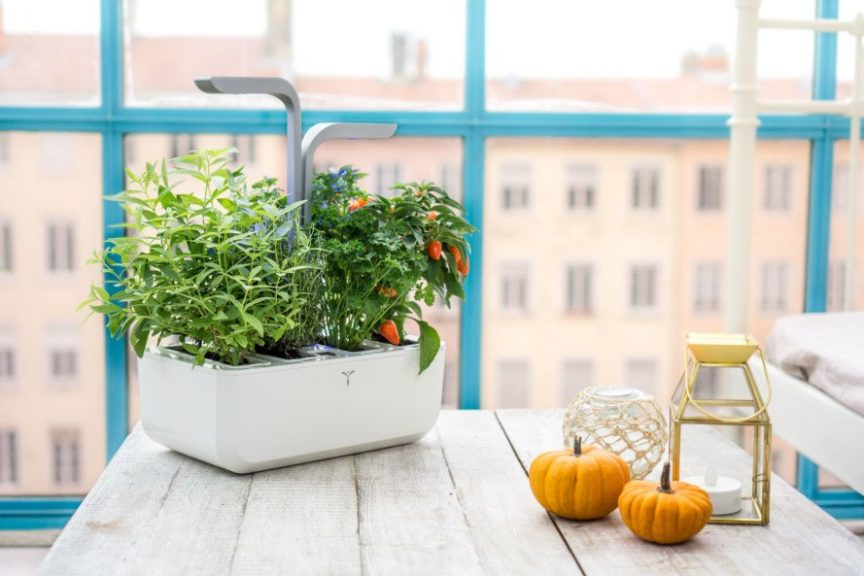 Veritable Smart Indoor Garden