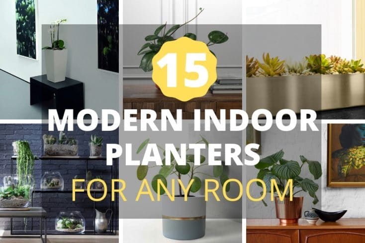 15 Modern Indoor Planters For Every