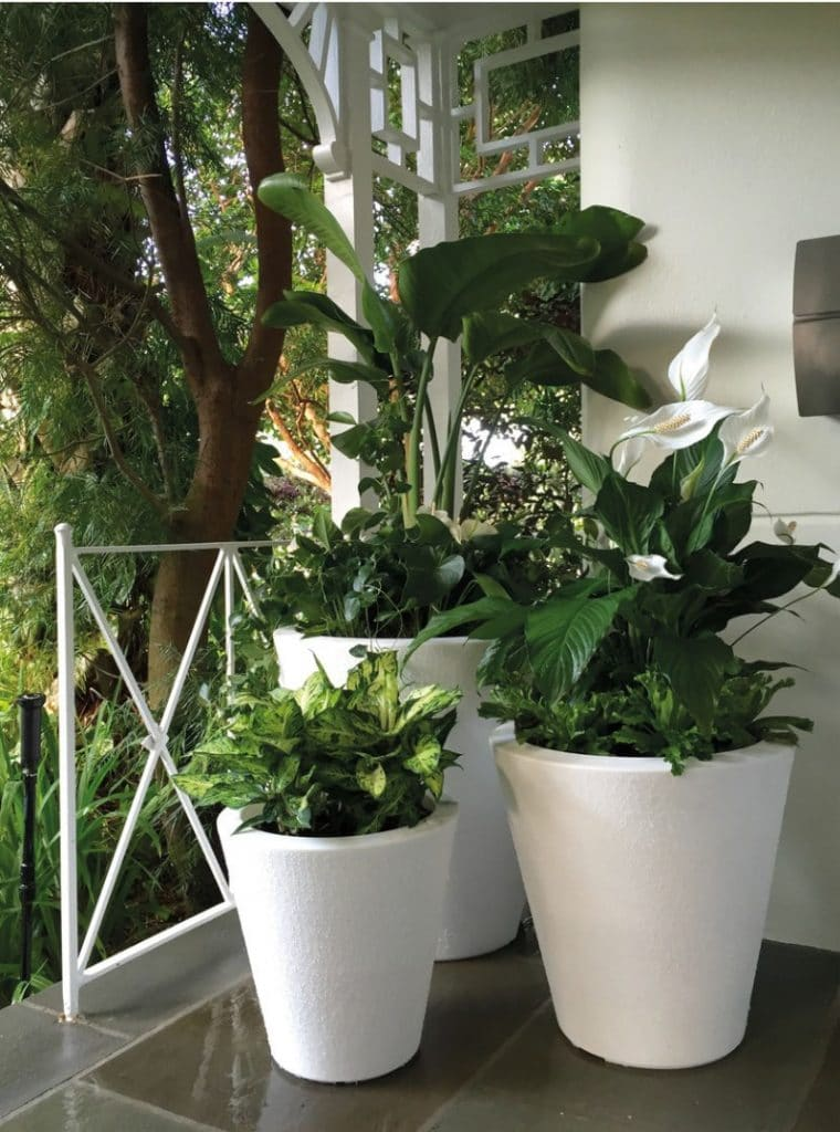 best indoor self watering planters