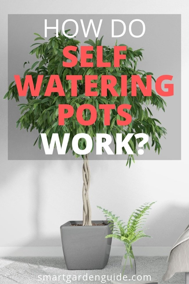 how do self watering pots work