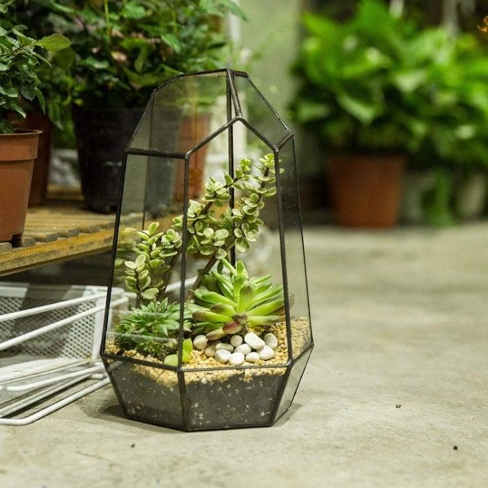 how does a terrarium work