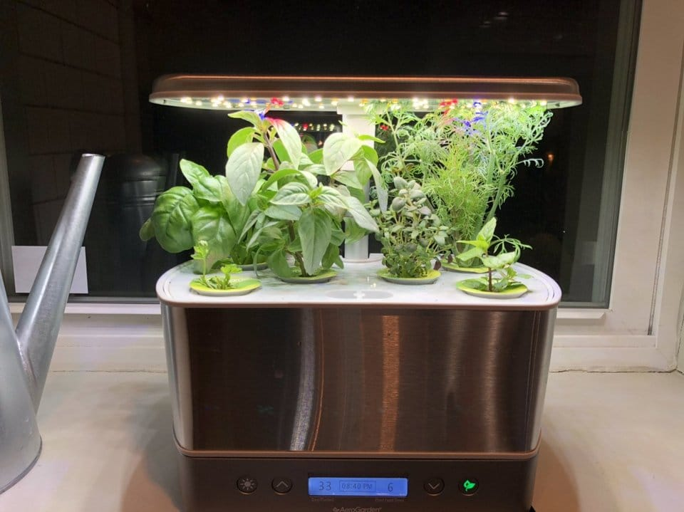 pros and cons of aerogarden
