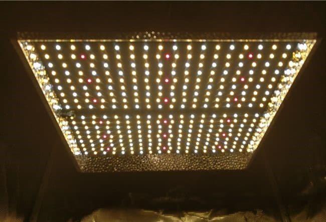 mars hydro ts1000w lights on