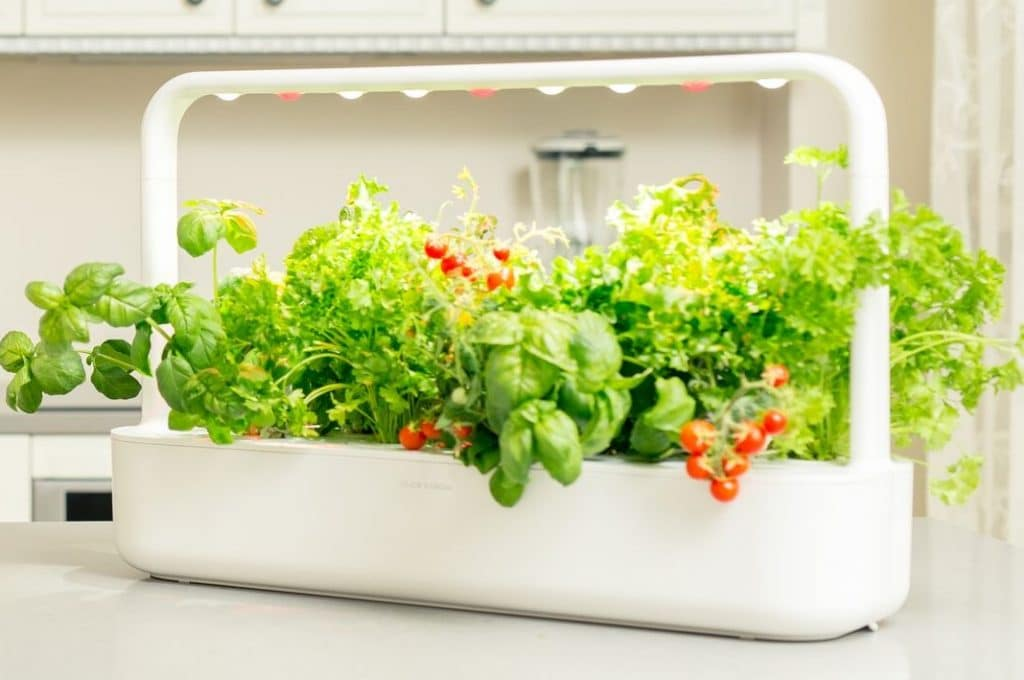 click and grow smart garden review and comparison