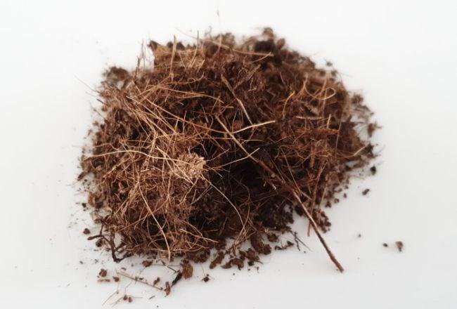coconut coir for potting soil for indoor plants