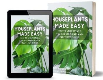 houseplants made easy